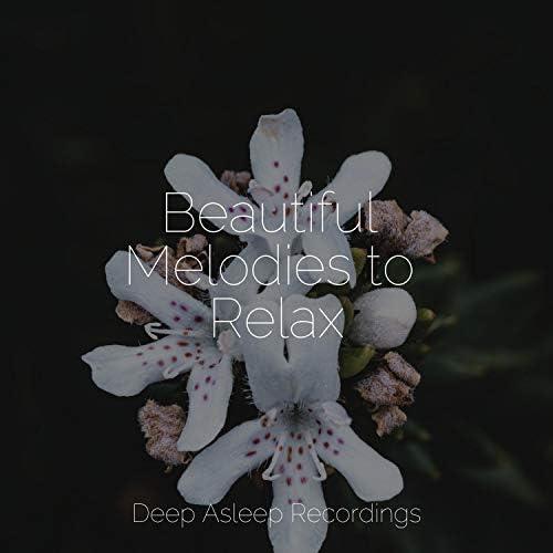 Relaxing Mindfulness Meditation Relaxation Maestro, Tonal Meditation Collective & Academia de Música con Sonidos de la Naturaleza