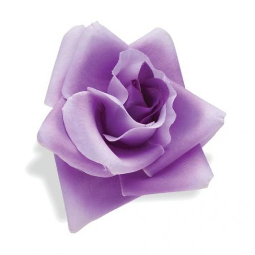 Lenkerblume Lila Rose