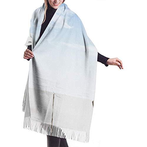 Laglacefond Winter sjaal Cashmere feel orchid bloempot glas geïsoleerde sjaals stijlvolle sjaal wraps zachte warme deken sjaals