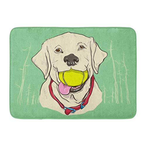 JoneAJ Haus mit Anti-Rutsch-Unterlage Plüsch dekorative Matte Hund gelb Labor Labrador Ball süßes Gesicht Wald Badezimmer Dekoration Teppich Dusche Teppich Flanell Material 40x60cm