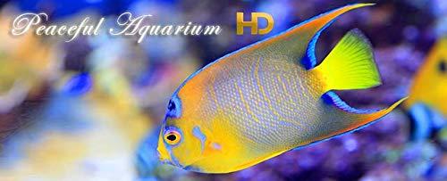 『Peaceful Aquarium HD』の11枚目の画像