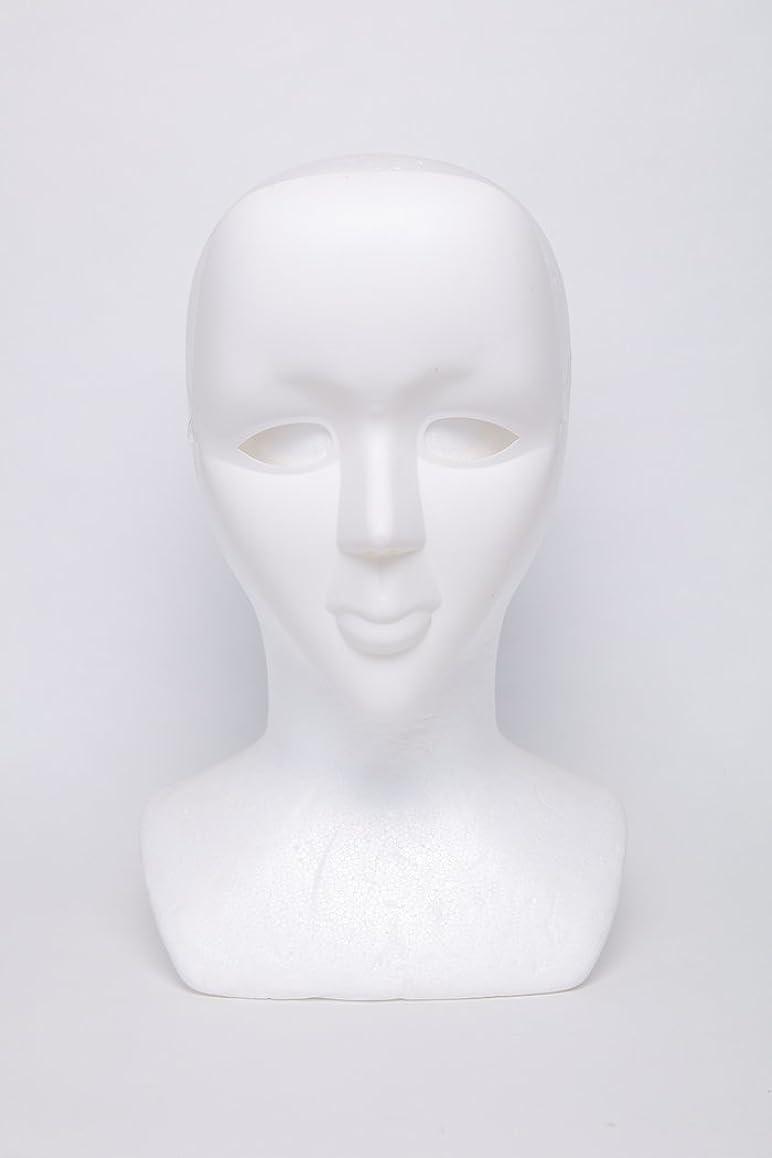 収まる温度計堤防ホワイトマスク