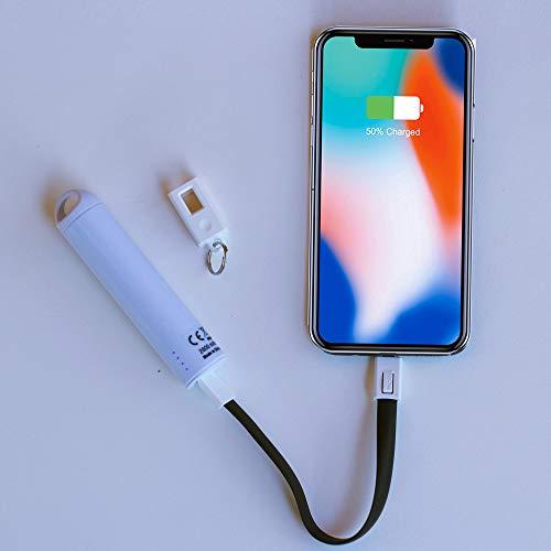 Lensta Powerpack con cable de carga (batería externa de 2600 mAh con indicador de carga LED, correa de mano, formato de bolsillo compacto) (EIN Powerpack con cable de carga para llaveros)
