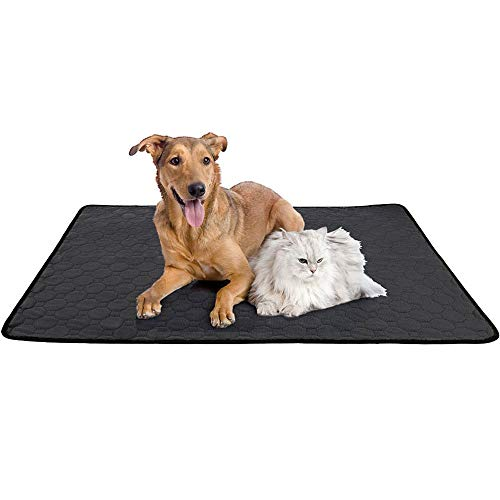 Dressurmatte Hundematte, waschbar, Trainingsmatte für Hunde, saugfähig, schnell wiederverwendbar, mit wasserdichter und rutschfester Unterseite für Innen, Outdoor, Auto und Reisen M
