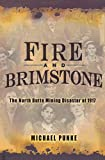 Cover of Michael Punke's Fire and Brimstone: The North Butte Mining Disaster of 1917.