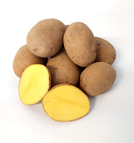 Kartoffel Afra mehlige Kartoffeln 1-25 Kg deutsche Speisekartoffel perfekt für Kartoffelsuppe, Püree, Gnocchi, Knödel, Kroketten, Ofenkartoffeln Aufläufe Salzkartoffeln auch zum Grillen geeignet (25)