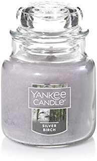 Yankee Candle Small Jar Candle, Silver Birch 3.7oz by Yankee Candle