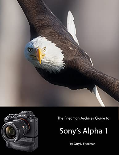 The Friedman Archives Guide to Sony's Alpha 1