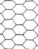 Jardin202 0'50 x 10 Metros - Malla metálica Hexagonal...
