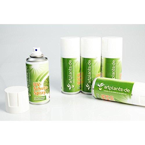 artplants.de UV Schutz Spray, 150ml Dose, Pflegewirkung für künstliche Pflanzen und Blumen, Kunstbäume und Kunstpalmen - für Außen und Innenbereich - 6