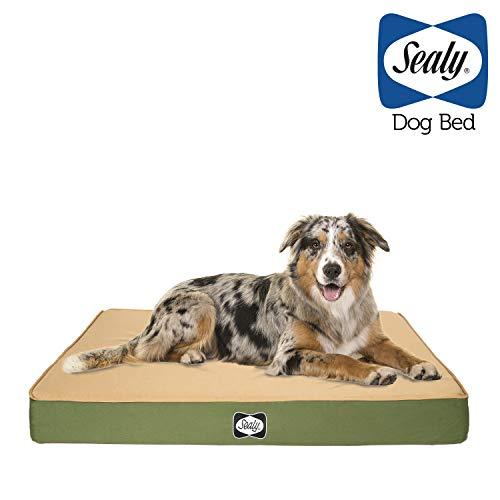Sealy Dog Bed Defender Series 94659 Hundebett für drinnen und draußen, IPX5 Zertifiziert, Medium Elite, Grün