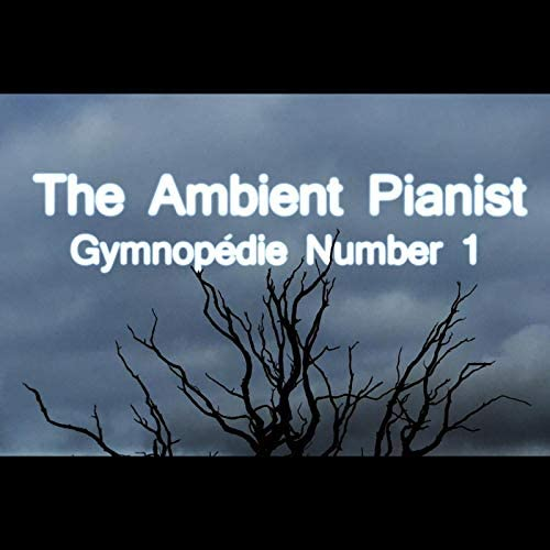 The Ambient Pianist