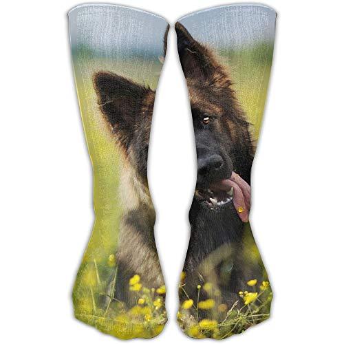 Women Men Classics Socks Cute German Shepherd Puppy Athletic Stockings Long Sock 19.7 inch