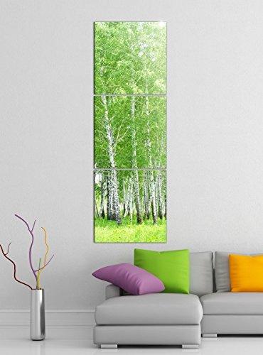 Acrylglasbilder 3 Teilig 50x150cm Birke Wald grün Frühling Landschaft Baum vertikal Druck Acrylbild Acrylbilder Acrylglas 14?7223, Acrylgröße 9:Gesamt 50x150cm