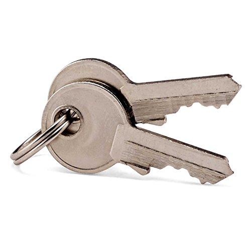 Samsonite Travel Sentry 2-pack Key Locks, Brass