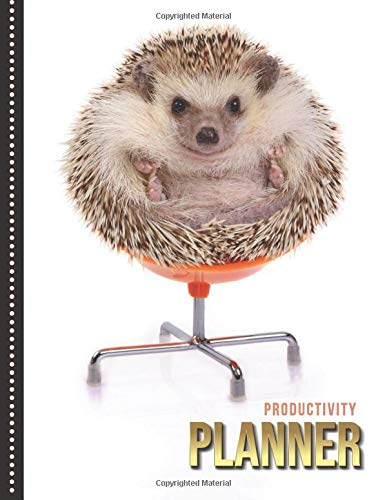 Productivity Planner: Funny Hedgehog in Office Chair - Animal Photo / Undated Weekly Organizer / 52-Week Life Journal With To Do List - Habit and Goal ... Calendar / Large Time Management Agenda Gift