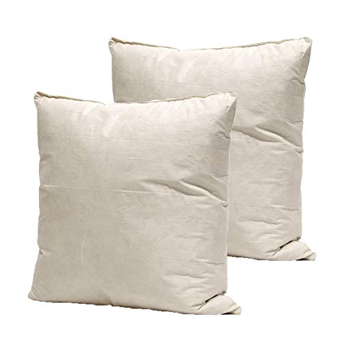 BEDWAY - 16 x 16 Inch (40 x 40cm) Natural Duck Feather Cushion Insert Pads Hypoallergenic with Feather Proof Cotton Cover – Pack of 2