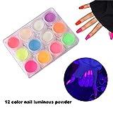 Uñas en polvo, polvo que brilla en la oscuridad fija colores fluorescentes de neón UV que cambian los pigmentos en polvo luminiscentes para el arte de uñas, uñas de gel UV, 12 colores