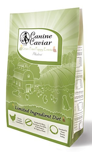 Canine Caviar Dry Puppy