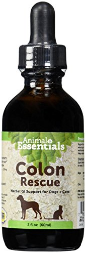 Animal Essentials Colon Rescue Herbal GI Support for Dogs & Cats, 2 fl oz   Phytomucil Blend Supports Normal Bowel Function