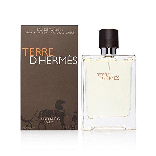 Hermes Terre DHermes Eau de Toilette Vaporizador 100 ml