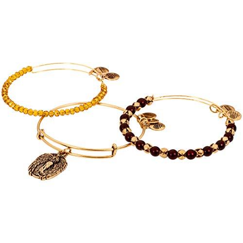 Alex And Ani Knowledge Two Tone One Size Bracelet A17RACK01RG