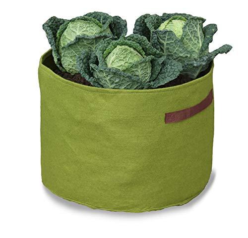 Tierra Garden Haxnicks VIG080101 Vigo Pots Sac à Plantes Vert 18 x 18 x 20 cm