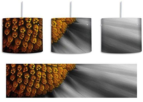 prächtige kleine Margerite schwarz/weiß inkl. Lampenfassung E27, Lampe mit Motivdruck, tolle Deckenlampe, Hängelampe, Pendelleuchte - Durchmesser 30cm - Dekoration mit Licht ideal für Wohnzimmer, Kinderzimmer, Schlafzimmer