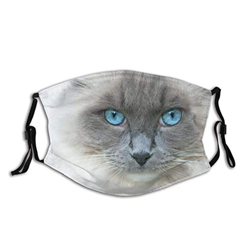 Cat's Eye Unisex Fashion Cat Kitten Animals Washable Reusable Cloth Face Mask Bandanas Balaclava Adjustable Face Protection