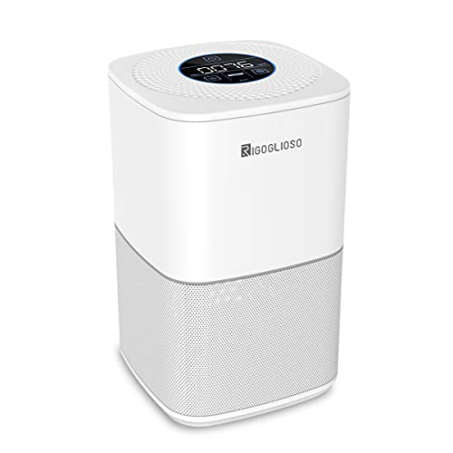 RIGOGLIOSO True HEPA Air Purifier for Home Bedroom, Ozone Free H13 Filter Air Cleaner Remove 99.97% Smoke Dust Pets Hair Pollen, SY910 Upgrade (Available for California)