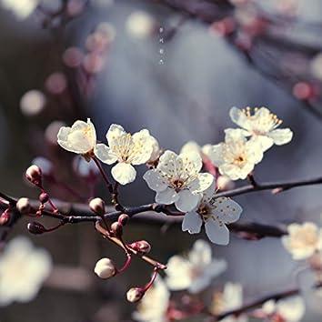 봄의 왈츠