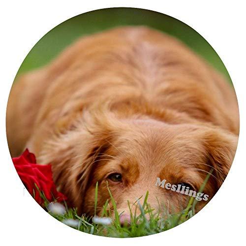 Mesllings - Cojín de asiento redondo con revestimiento largo, color marrón y rosa roja sobre verde hierba en el campo de hierba para el hogar, cómodos cojines para silla de oficina, cojín suave – diámetro de 39,35 pulgadas