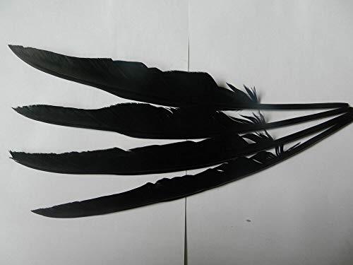 Rabenfedern, handgefertigt, Bastelzubehör, lange schwarze Feder, 30 - 35 cm, 15 Stück, Schwarz