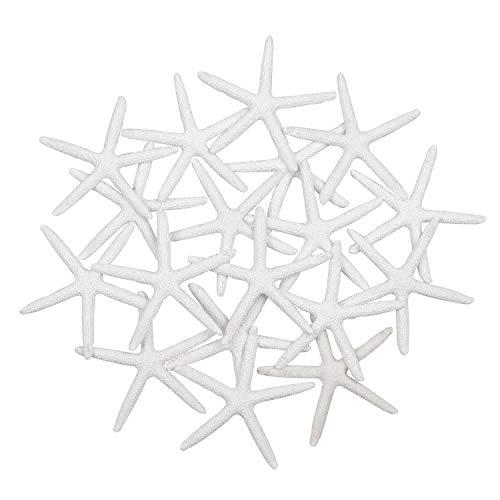 Yixuan 20 Stück 8 cm Harz Seestern weißer Harz Bleistift Finger Seestern Deko Seestern Aquarium Seestern für Hochzeit Dekor, Hauptdekor, Bastelprojekt, Fertigkeit Projekt