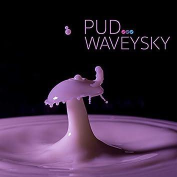Wavey Sky