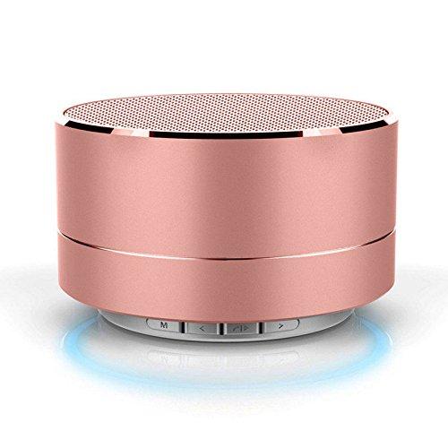 REALMAX Metal Bluetooth Speakers High Bass Portable Wireless Premium...