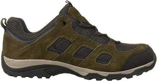 Jack Wolfskin Herren Vojo Hike 2 Low M Walking-Schuh, Coconut Brown/Dark Steel, 45 EU