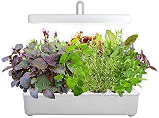 LED Hydroponic Grow System Kit Indoor Herb Garden, 10-Pod GrowLED Hydroponics Plant Growing Lights Indoor Gardening Herbs ...