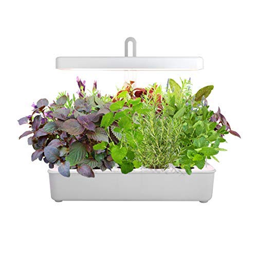 LED Hydroponic Grow System Kit Indoor Herb Garden, 10-Pod GrowLED Hydroponics Plant Growing Lights...
