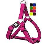 DDOXX Arnés Perro Step-In Air Mesh, Ajustable, Acolchado | Muchos Colores & Tamaños | para Perros Pequeño, Mediano y Grande | Accesorios Gato Cachorro | Rosado Pink, XS