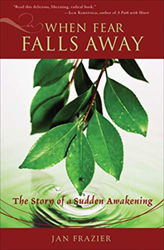 When Fear Falls Away: The Story of a Sudden Awakening (English Edition)