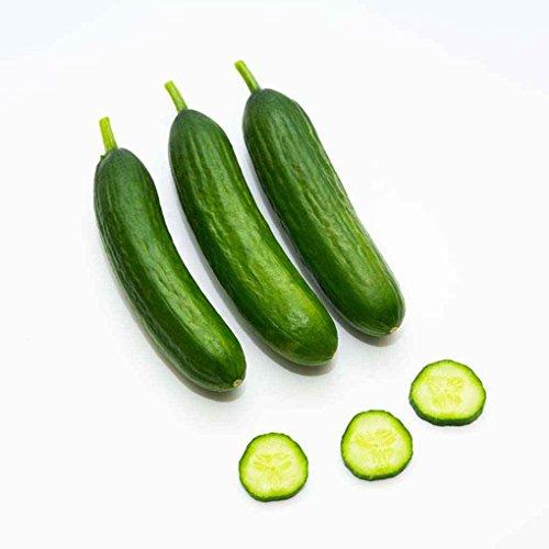 Sunlera 20pcs / bag Cetrioli cuke Semi Frutta Verdura Semi per il giardino domestico di impianto
