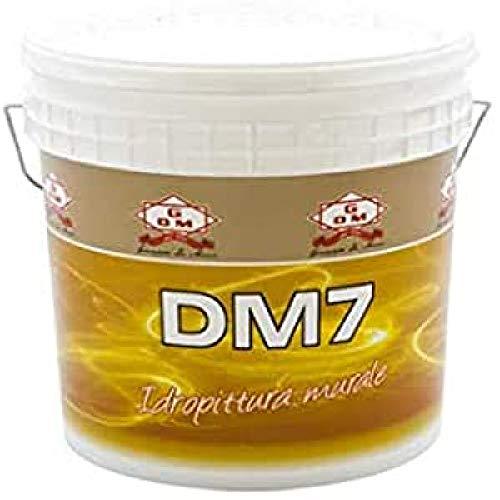 GDM 600103700010230 DM7 Pittura Murale da Litri 13, Bianco, 13 Litri