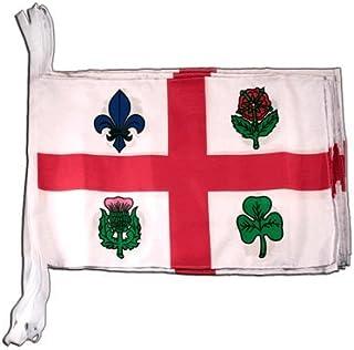 Digni drapeau Canada Quebec 30 x 45 cm