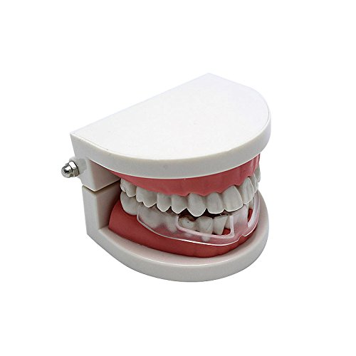 CHAW Fashion Tooth Protector Dental Sleeping Night Oral Baltimore Mall