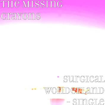 Surgical Wonderland - Single