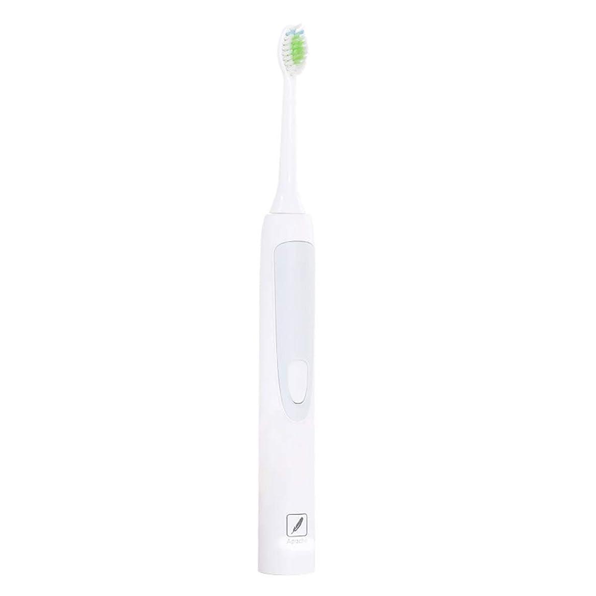 ポーン美容師剥ぎ取る電動歯ブラシ、自動電動歯ブラシ、成人ワイヤレス充電用歯ブラシ、自動電動歯ブラシ