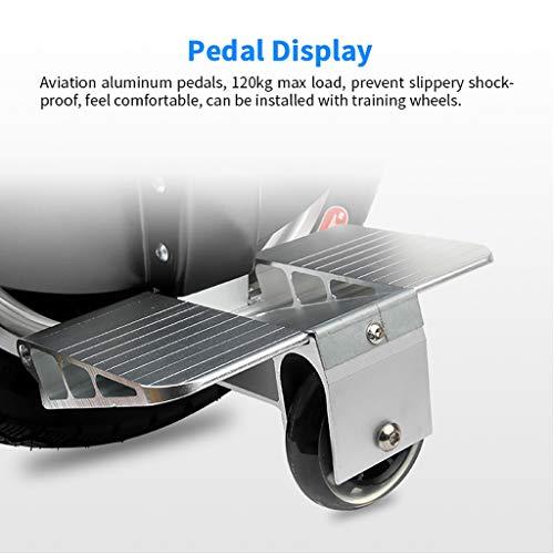Monowheel XLanY Solo Elektrisches Einrad Bild 3*