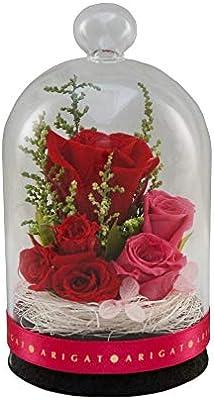 プリザーブドフラワー グラスドーム レギュラー レッディー 枯れないお花 バラ プレゼント 演出手伝い インテリア