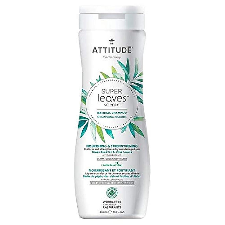 手がかり東正直[Attitude ] 姿勢スーパーはシャンプー栄養&強化473ミリリットルの葉 - Attitude Super Leaves Shampoo Nourishing & Strengthening 473ml [並行輸入品]